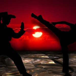 Martial Arts Photo