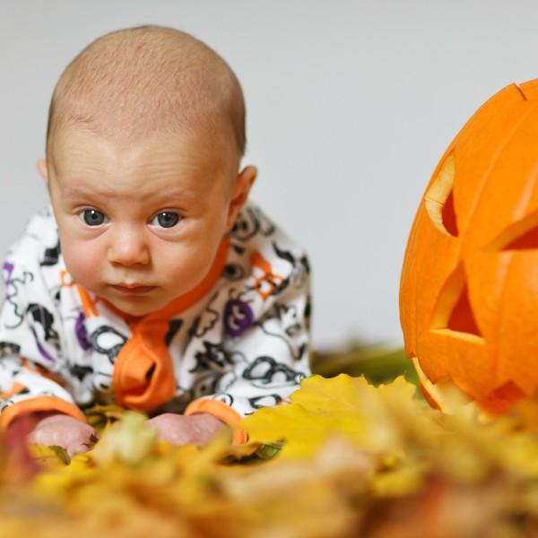 Cute Pumpkin Photo