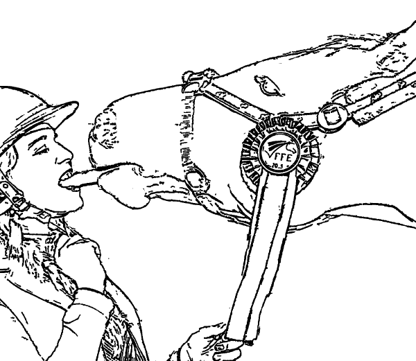 Lady And The Horse Coloring Page