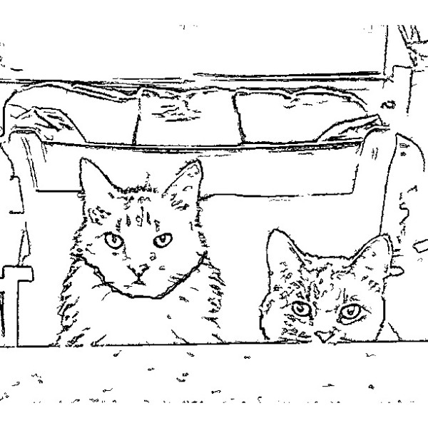 ReallyColor - Hey Kitty Kitty Coloring Page