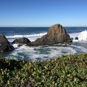 ReallyColor User Hall of Fame - Landscape Photo