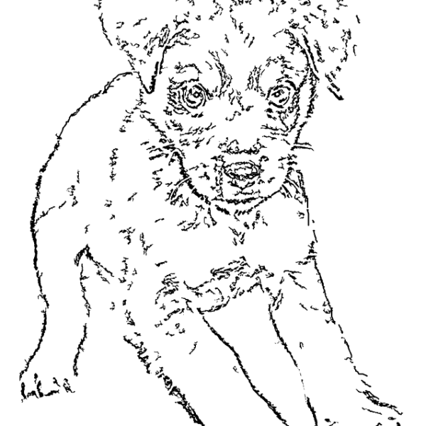 ReallyColor User Hall of Fame - Cute Puppy Coloring Page
