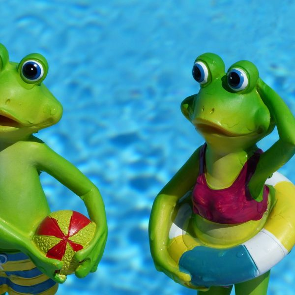 ReallyColor Hall of Fame - Swimming Frogs Photo