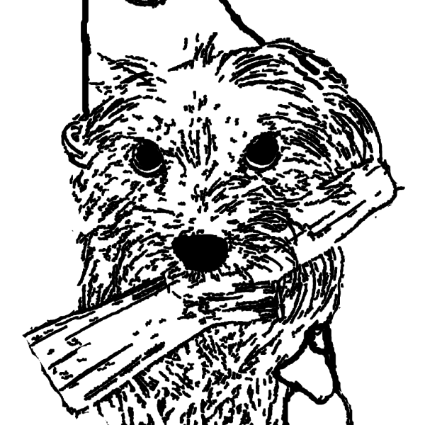 ReallyColor - Birthday Dog Coloring Page