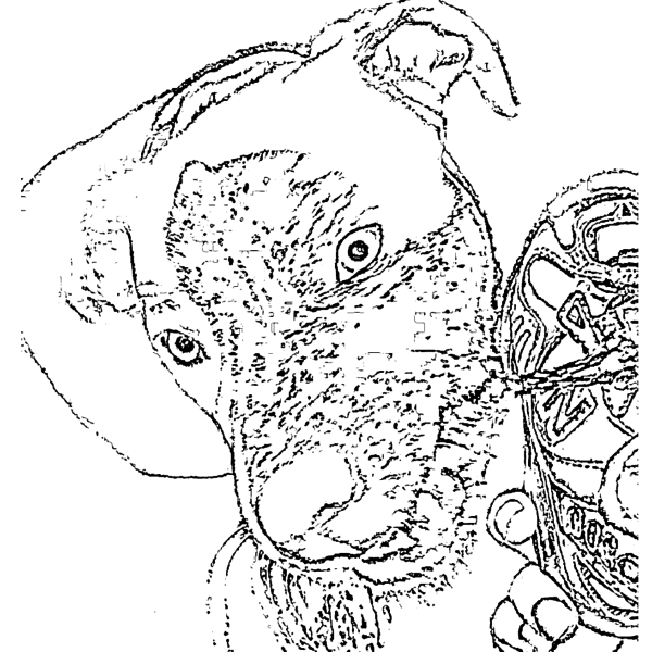 ReallyColor - Dog Food Coloring Page